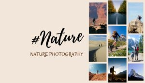 Best nature hashtags and nature photography hashtags for Instagram