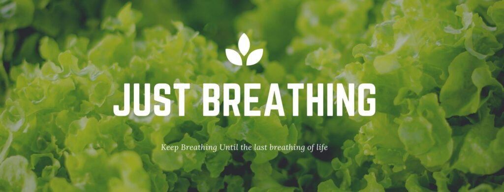 Just breathing - Keep breathing Contact us @breathingstation