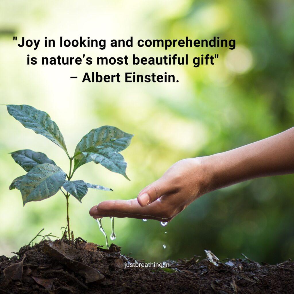 Sir Albert Einstein Nature Captions – Sir Albert Einstein Quotes about Nature