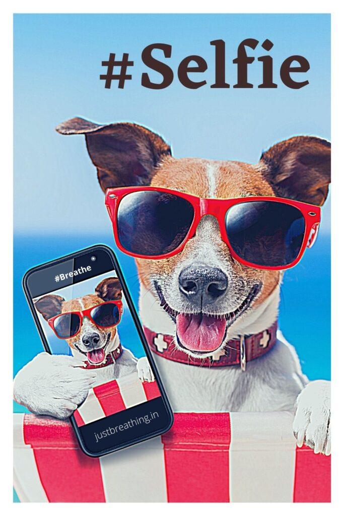 #Selfie Hashtags & Captions for Instagram, Facebook, Tumblr and Tiktok