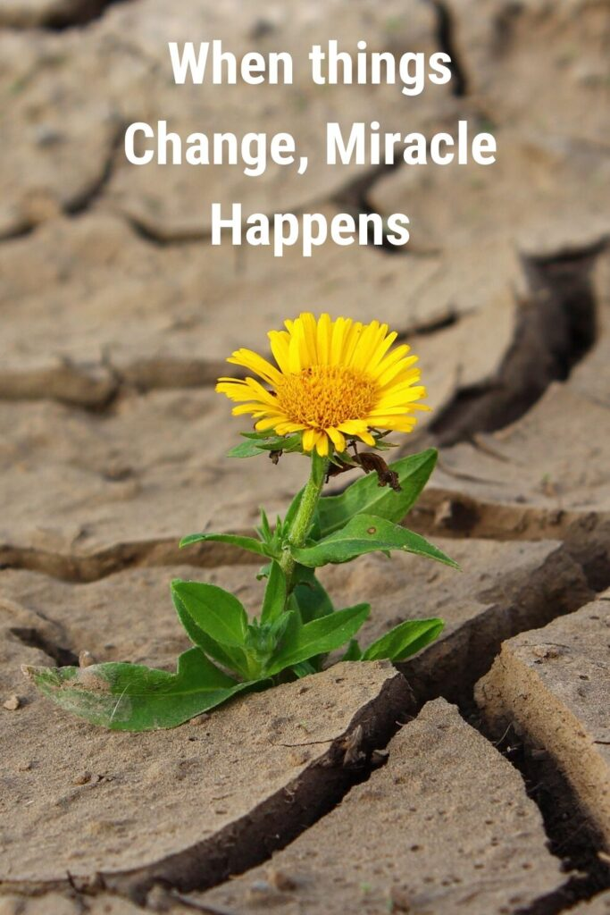 When things change, a miracle happens - quotes for every businessmen success