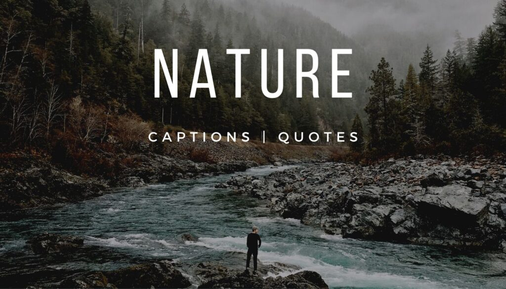 101 Amazing Nature Captions for Instagram and 21 Best Nature Quotes for Instagram