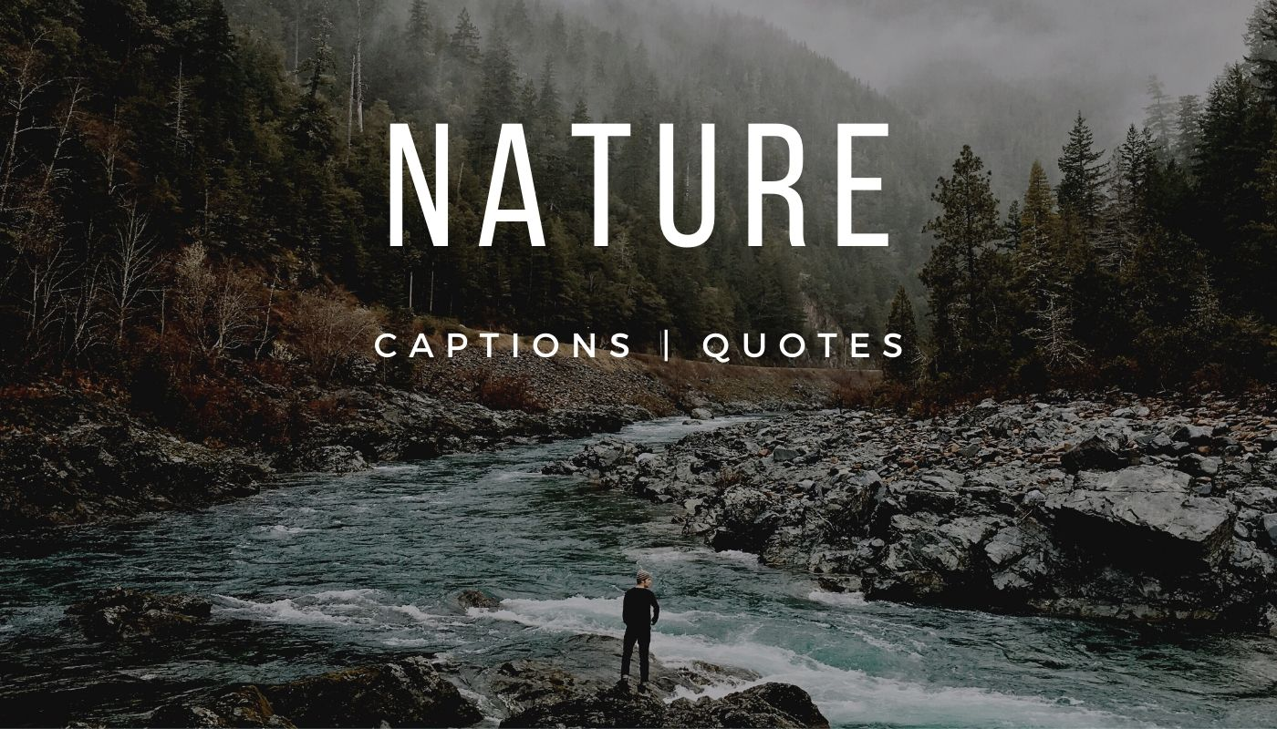 101 Amazing Nature Captions for Instagram and 21 Best Nature Quotes
