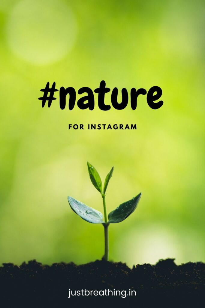 nature hashtags for instagram - #nature