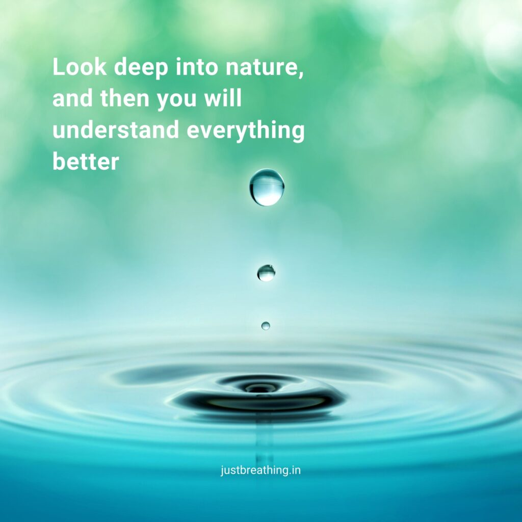 Nature quotes and caption for instagram photo