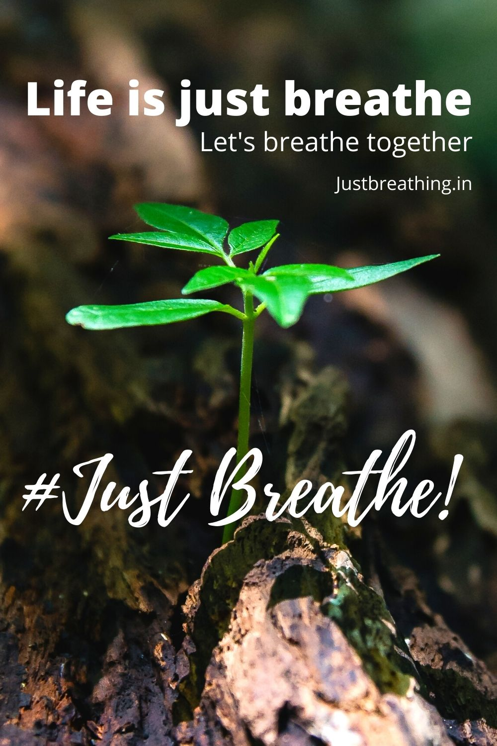 life is just breathe breathe and Just breathe hashtags for instagram