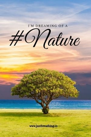 Best hashtags of nature for Instagram and Green nature photography hashtags to get more like